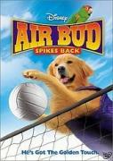 Въздушният бъд: Волейболна лига | филми 2003