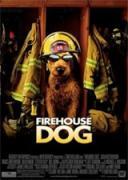 Пожарникарско Куче   филми 2007